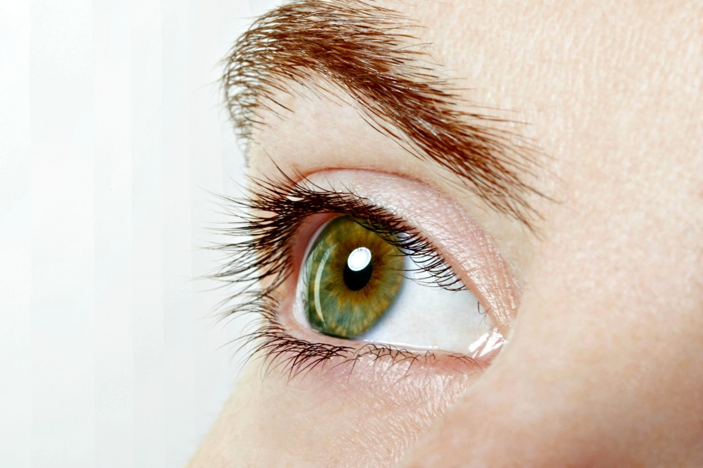 Human, green healthy eye macro with white background